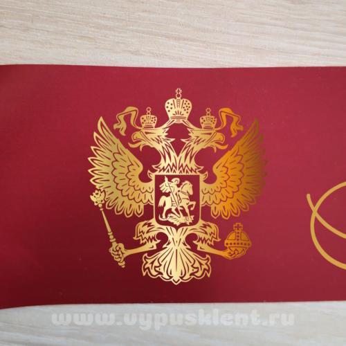 Дизайн эмблемы №6